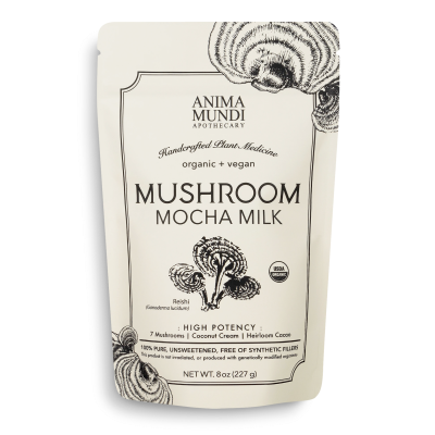 Mushroom Mocha Milk